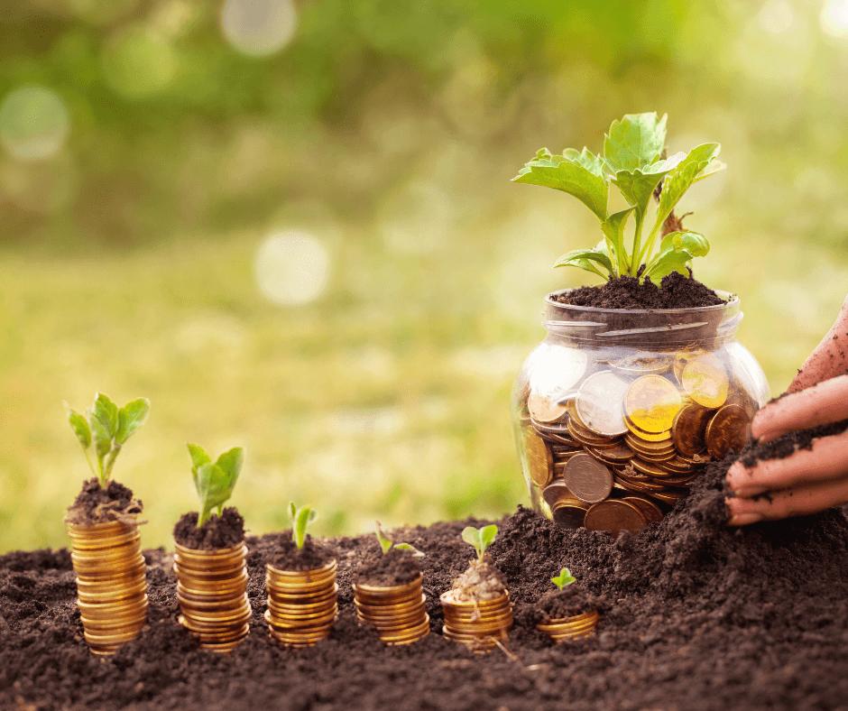Investeren in jezelf - Margreet Stegeman (1)